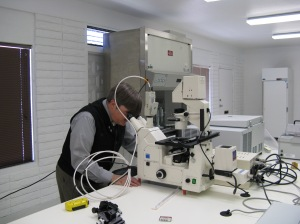 Dr Payne at the Zeiss Microscope